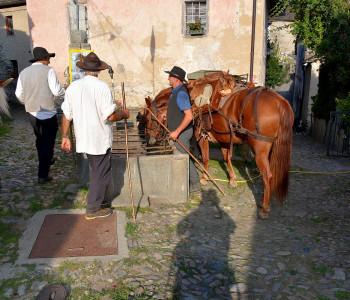 Säumer-Trekking  Simplon -Domodossola