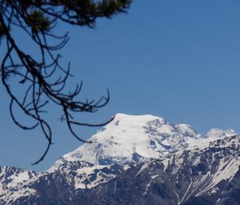 Kurz-Wanderwoche Val Müstair, Nationalpark und Stilfserjoch: Den Bergfrühling erleben