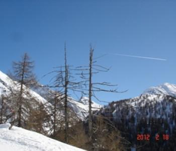 Schneeschuhwandern am jungen Rotten