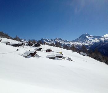 Aletsch-Trail