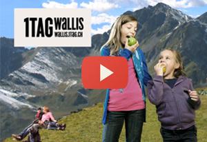 1 Tag Wallis
