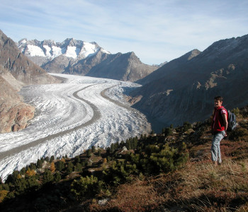 Belalp - Oberaletsch - Riederalp - Alpentrekking