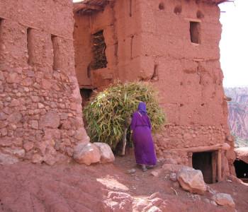 Marokko Hoher Atlas M'Ghoun 4068m